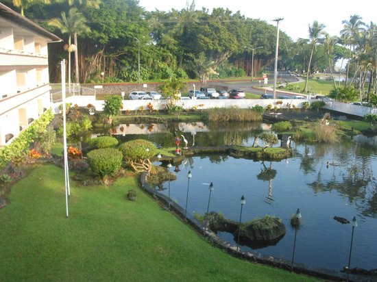 Hilo Seaside Hotel : View from our room