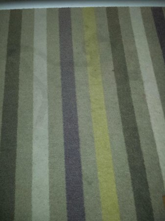 Mercure Carcassonne La Cite Hotel: Filthy Carpet!