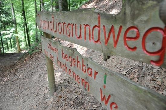 Moeggers, Austria: der Inspirationsweg, besser Kletterpfad - COOOL!