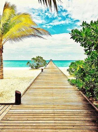 Holiday Island Resort & Spa: Empfang