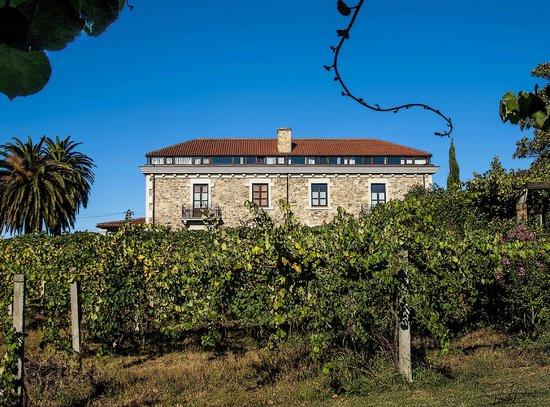 Pazo de Galegos y sus viñedos