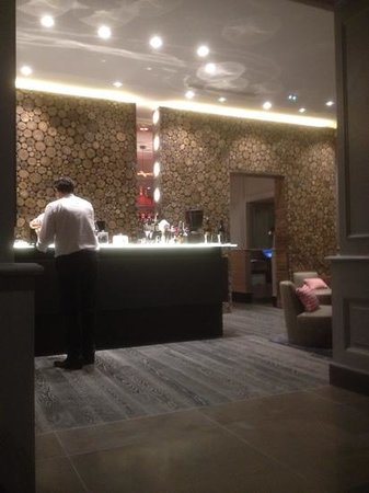 Hotel Mont-Blanc : bar avec de vrais rondins de bois..