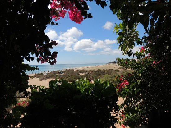 SBH Taro Beach: Schattiger Platz - Beach Bar