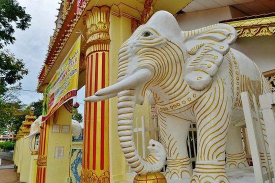 Dharmikarama Burmese Temple : White elephant