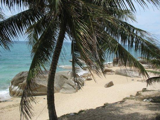 Paradise Lamai Bungalow: Пляж