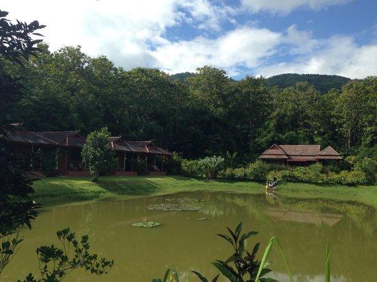 Nok's Garden Resort: Over all or resort in sunshine day