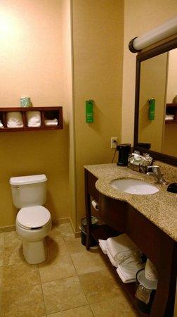 Hampton Inn Lincoln: Bathroom