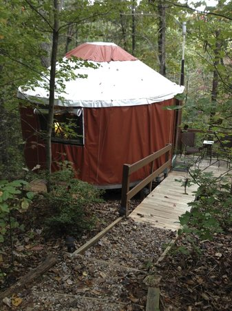 Cedar House Inn & Yurts : Here is our Yurt from the outside