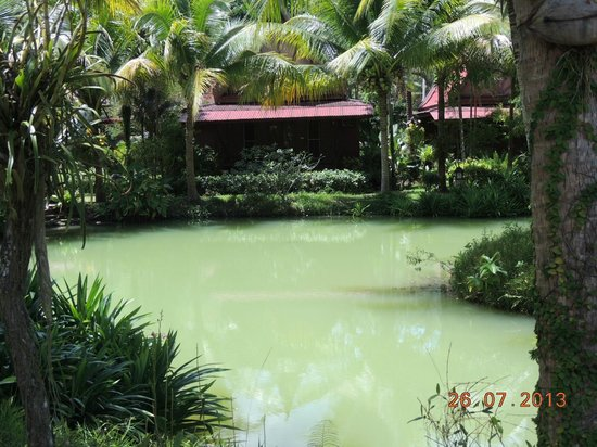 Green View Village Resort: Lago