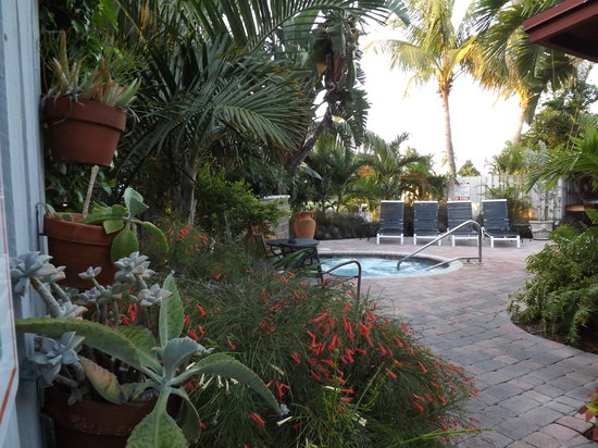 The Cabanas Guesthouse & Spa : Hot tub