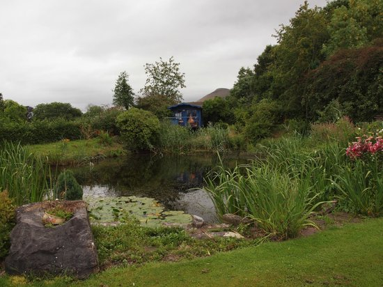 Pen-y Bryn Guest House: Pond and grounds