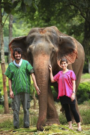 Dreamcatchers B&B: Patara Elephant Farm