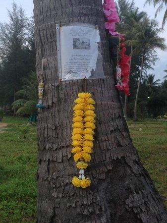 Khaolak Orchid Beach Resort: Memorial Tree