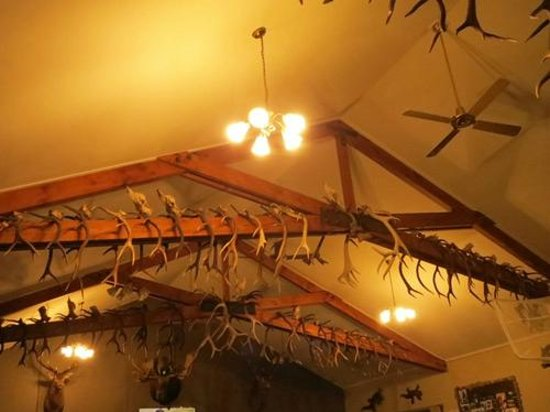 Hard Antler Bar & : decor in the Hard Antler