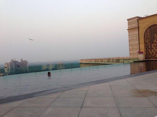 เดอะลีลา พาเลซ นิวเดลี: rooftop pool