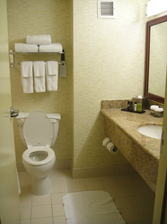 Embassy Suites by Hilton Washington-Convention Center: Bathroom