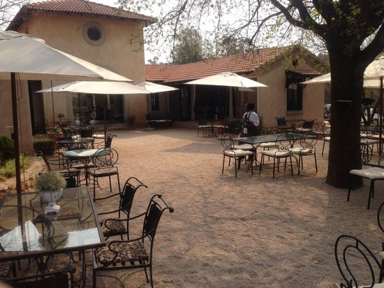 Avianto : Lunch under the shade with pretty exotic birds chirping around