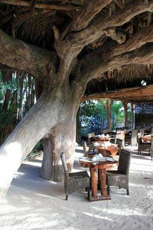 Augerine Guest House : Restaurant