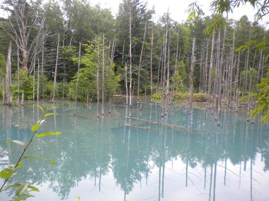 Blue Pond: 青い池3