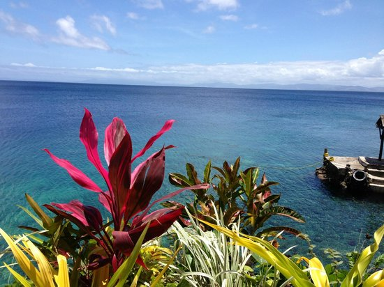 Paradise Taveuni : View from walk out point