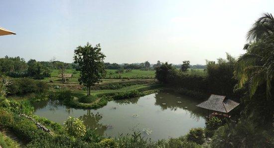 Pa Sak Tong: View from Villa Balcony