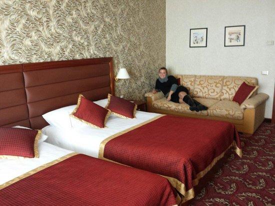 Remisens Premium Hotel Metropol: Room
