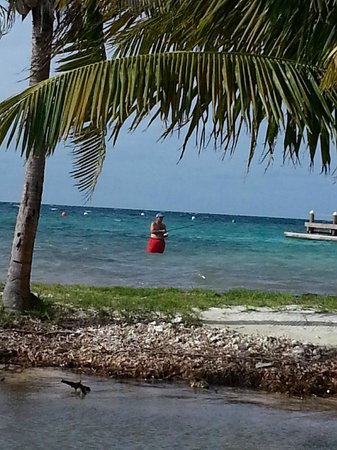 Hatchet Caye Resort: Shore fising for bones