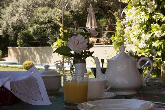 SucMiei : Petit déjeuner sur la terrasse couverte