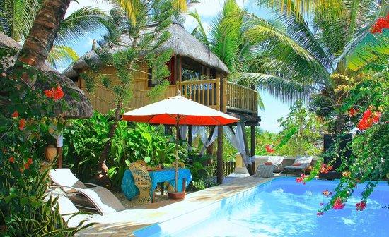 Unsere Baumhaus-Lodge der Villa Seewoo (78893727)