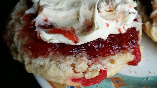 The Singing Kettle Tea Room and Eatery: Cherry scone