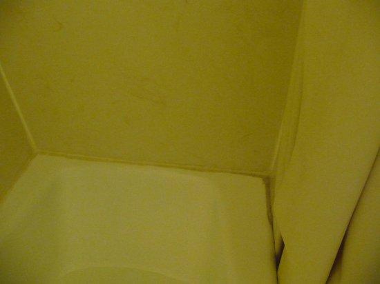 Surf Motel : Murs et tour de baignoire