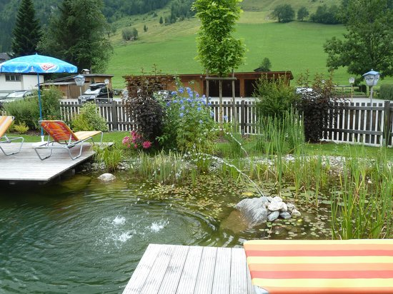 Hotel Roemerhof : Outdoor natural pool