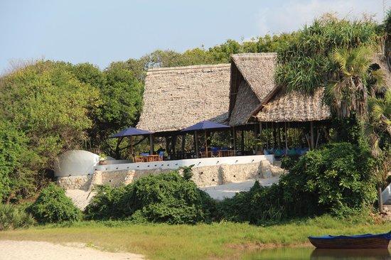 Ras Kutani: View from the beach