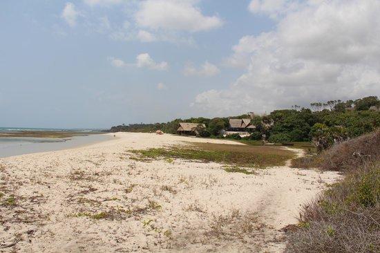 Ras Kutani: Beach