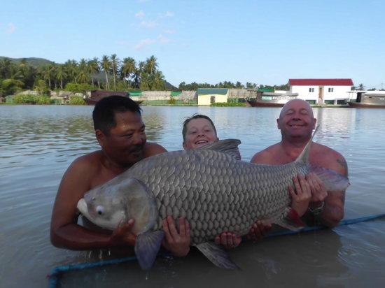 TopCats Fresh Water Fishing Resort : Giant Siamese Carp