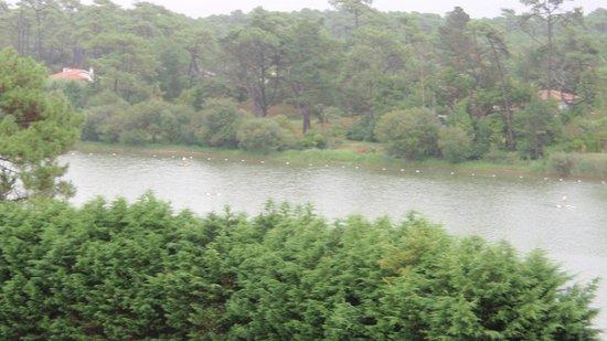 Chiberta et Golf: plan d'eau du practice vu de la chambre