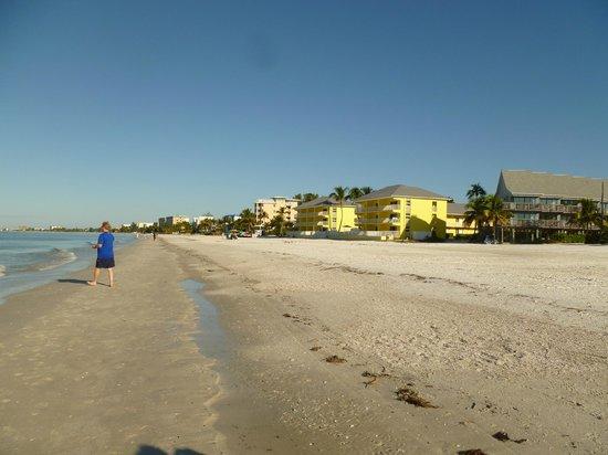 Sandpiper Gulf Resort: Looking for shells