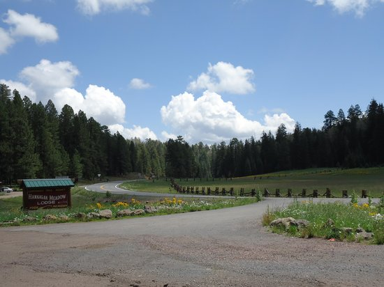 Hannagan Meadow Lodge: anothe view of the meadow