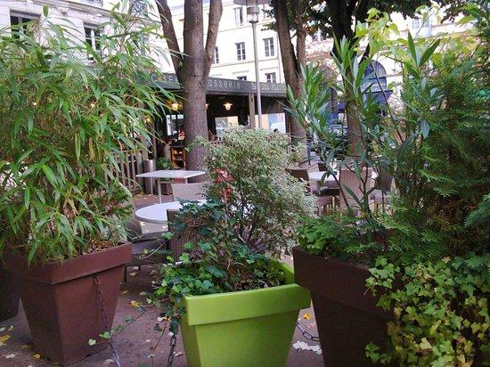 Brasserie Bar des fleurs : Terrasse en automne