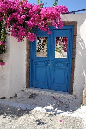 Private Santorini Tours - Private Day Tours: Amazing Color