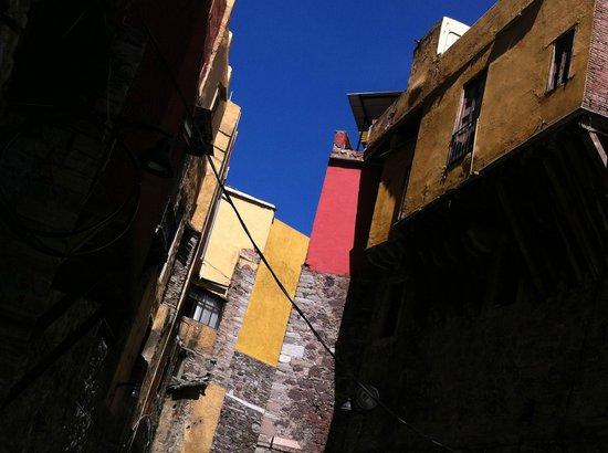 Casa de Dante Hostel: Calle Miguel Hidalgo
