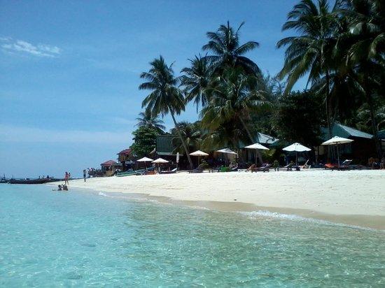 Mama's Chalet : spiaggia di Tuna Bay