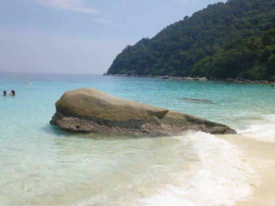 Mama's Chalet : spiaggia di turtle beach
