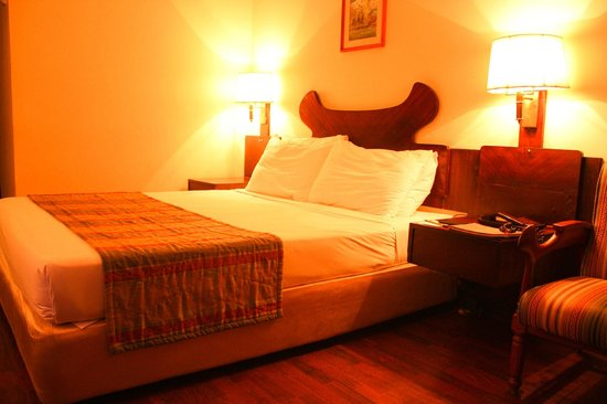 The Everest Hotel : Room