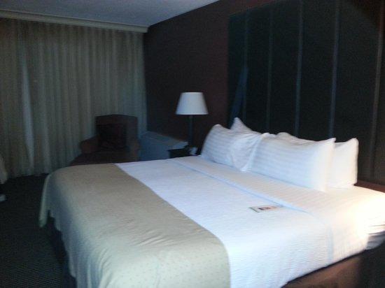 Holiday Inn Baltimore-Inner Harbor: King sized bed