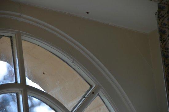 Hotel Egmond : Bichos en la ventana de la habitación