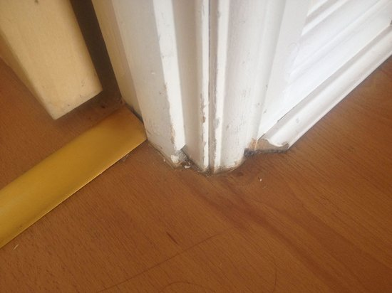 Lochend Serviced Apartments: Falling apart furnishings and filthy