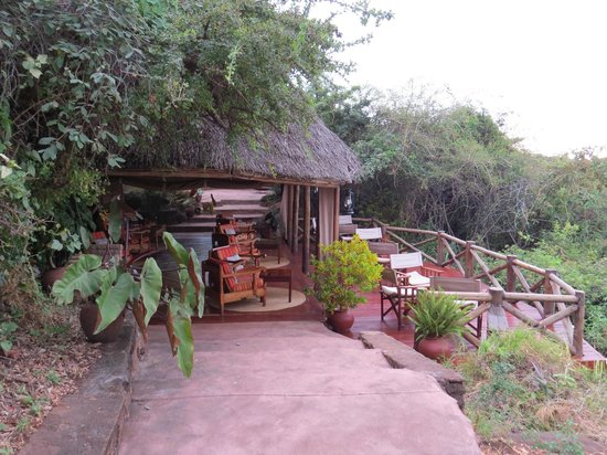 Kirurumu Manyara Lodge : Terrasse du bar avec vue sur le lac Manyara