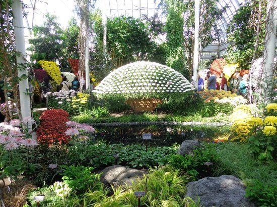 21 Picture Of New York Botanical Garden Bronx Tripadvisor