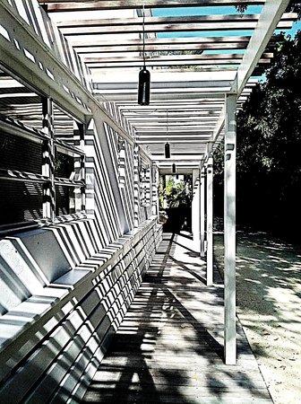 Casa Morada: Entry walkway